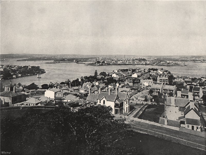 Associate Product SYDNEY. View from the North Shore. New South Wales 1895 old antique print