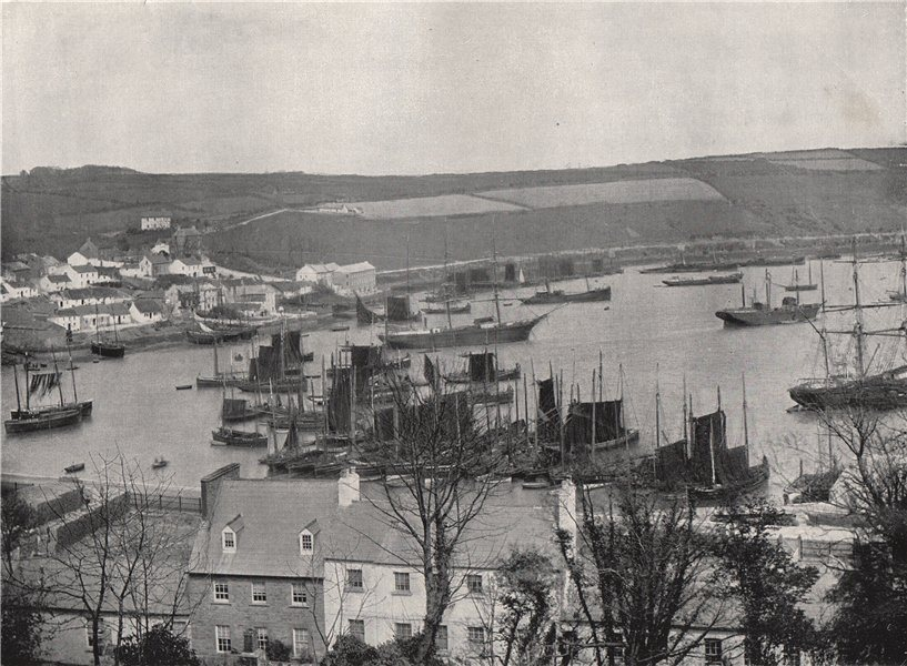 Associate Product KINSALE. A fishing fleet in the harbour. Ireland 1895 old antique print