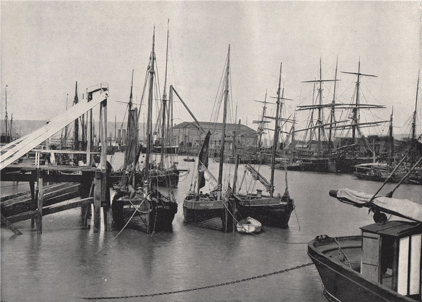 Associate Product NEWHAVEN. In the harbour. Sussex 1895 old antique vintage print picture