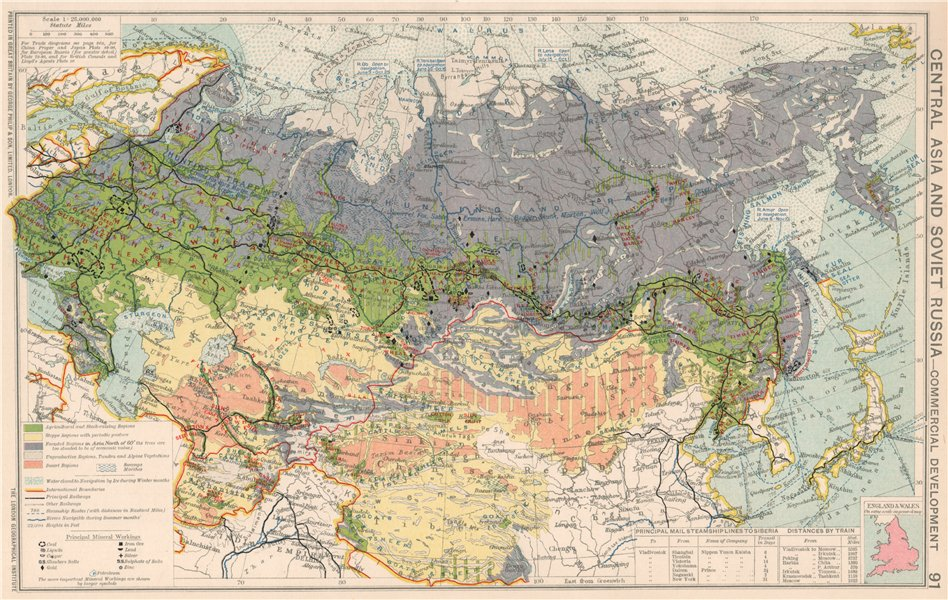 Associate Product Central Asia & Soviet Russia. Commercial Agricultual Minerals & Mining 1925 map