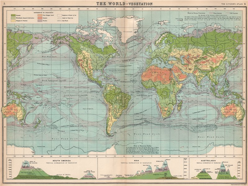 Associate Product WORLD VEGETATION & OCEAN CURRENTS & vertical distribution of vegetation 1912 map