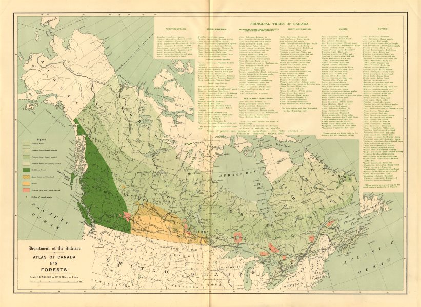 Associate Product CANADA FORESTS. Cordilleran. Prairis. Parks. Timber reserves. WHITE 1906 map