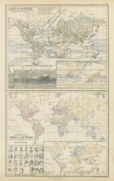 Associate Product World physical features ocean currents ethnographical religions 1856 old map