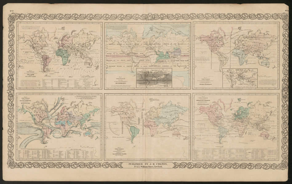 Associate Product Worldl. Cotidal Ocean lines currents Meteorology plants animals COLTON 1863 map