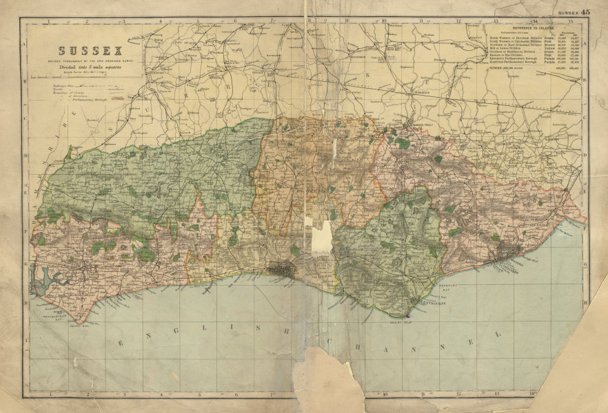 Associate Product SUSSEX County map Parliamentary constituencies railways divisions BACON 1900