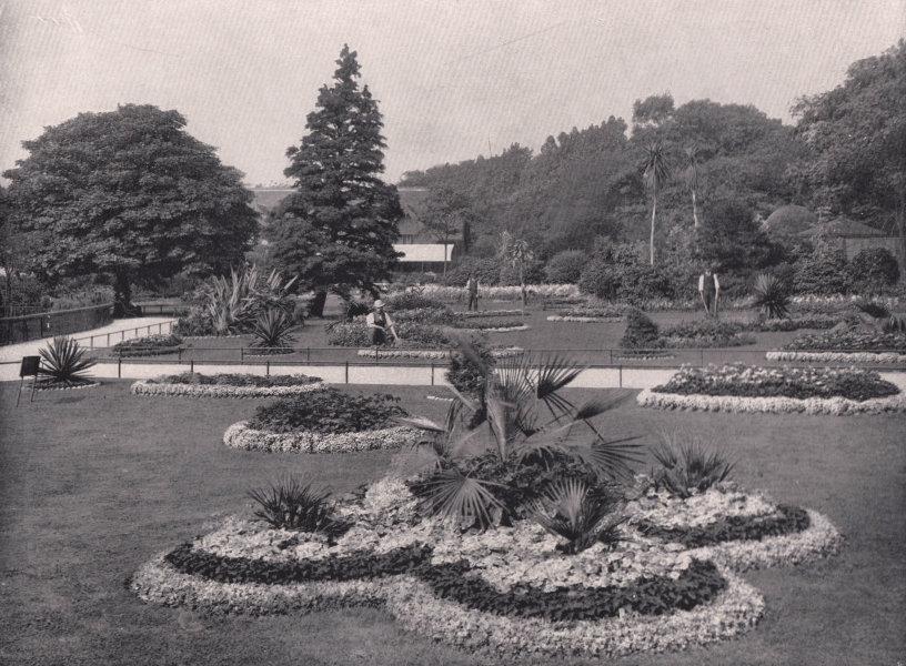 Associate Product The Royal Botanic Gardens - View in the Royal Botanic Gardens. London 1896