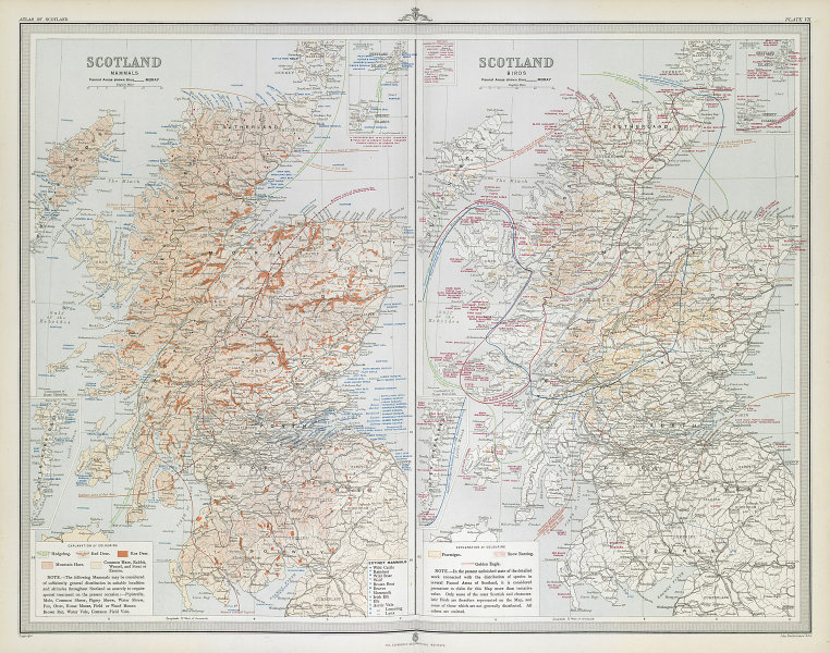 SCOTLAND Mammals Birds. Red Roe deer hare extinct Ptarmigan Eagle LARGE 1895 map
