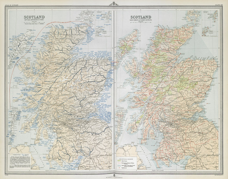 SCOTLAND Salmon rivers/districts. Deer Forests. Fish species. LARGE 1895 map
