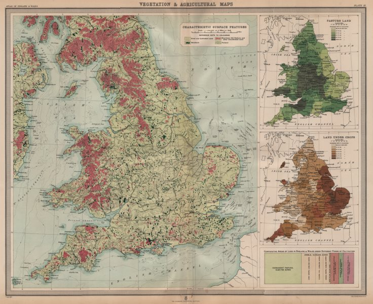 Associate Product ENGLAND WALES. Vegetation Agriculture cultivated land crops. LARGE 1903 map