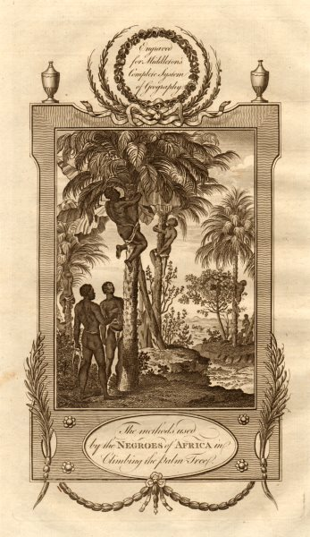 """Associate Product """"Methods used by the negroes of Africa in climbing the palm tree"""" MIDDLETON 1779"""
