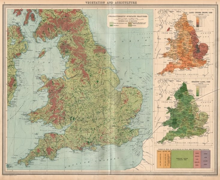 ENGLAND WALES Vegetation Agriculture cultivated land crops. LARGE 1939 old map