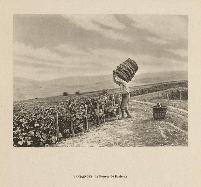 Associate Product Vendanges - Le Porteur de Paniers. Champagne grape harvest 1944 old print