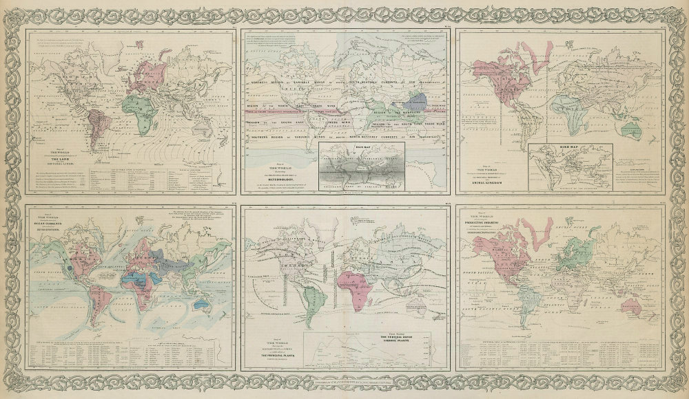World. Cotidal Ocean lines currents Meteorology plants animals COLTON 1869 map